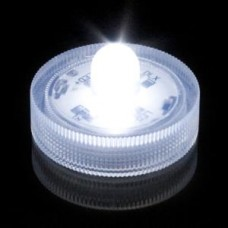 Submersible LED - Clear White