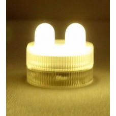 Submersible LED - 2 Bulbs - Warm White